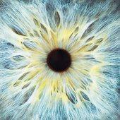 Blue eye, close-up